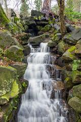 2017-01-17 Rivelin-7384.jpg (Elf Call) Tags: nikon endcliffepark river yorkshire water stream 18105 sheffield steppingstones waterfall d7200 blurred