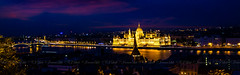 Love the city, Budapest (CJ Luck) Tags: budapest cj castle downtown europe european fishermansbastion hill hungarian hungarianparliament hungary national outdoor parliament sony sonya77 streelights twilight yellow architecture bridge building city cityhall cityscape cjluck cultural danuberiver dwelling fisherman glow golden historic historical humanculture humandevelop landmark lanscape light longexposure longshutter lucent night overlook overview purple river riverside scenery scenic slowshutter view viewpoint waterscape waterside wide