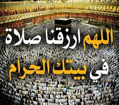 تسوية الصفوف في الصلاة (albersyria) Tags: الصلاة مكة