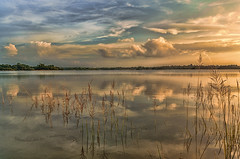 DSC_2618 Evening Scenario, Chatla, Silchar, Assam, 2014 (m_dey) Tags: reflection clouds eveningsky assam sigma1020mm eveningclouds silchar reflectionsofclouds nikond7000 chatla