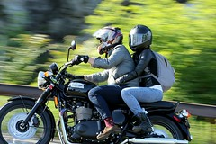 Triumph Bonneville T100 1506076335w (gparet) Tags: bearmountain bridge road scenic overlook motorcycles goattrail goatpath windingroad curves twisties couple couples motorcycle outdoor sport vehicle bike wheel motorcyclist
