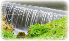 Big Falls! ('cosmicgirl1960' NEW CANON CAMERA) Tags: white green nature water grass waterfall moss border somerset flowing frosting rickford yabbadabbadoo
