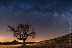 Cielos nocturnos de Murcia (Carlos J. Teruel) Tags: murcia le nocturnas 1835 nikon1835 xaviersam carlosjteruel d800e nikonafsnikkor1835mmf3545ged