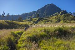 _DSC0511SSRFW (a.faizal) Tags: mountain indonesia asian volcano asia hiking hike hikers volcanic lombok asean mountaineer rinjani lombokisland mountrinjani