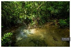 425 Hun Nal Ye - Coban ([nelo]) Tags: naturaleza mountain ro forest river guatemala 180 bosque cenote manual gt montaa 16mm f4 piedras cobn iso500 2stars sacatepquez laantiguaguatemala canoneos6d hunnalye expcomp1032 parqueeclogico 20150523 22645pm