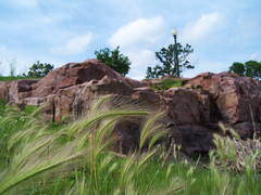 Grass And Red Rock (J Swanstrom (Check out my albums)) Tags: pink red grass rock stone kodak south falls sd dakota dx7590 quartzite sioux jswanstromphotography