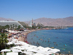Bay of Aqaba!