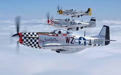 "North American P-51 ""Mustangs"" (aeroman3) Tags:"
