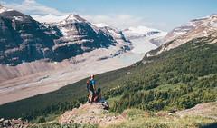 saskatchewan glacier hike