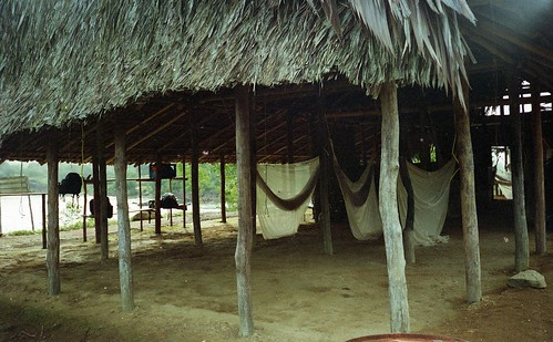 Our sleeping quarters - hammocks and mosquito nets
