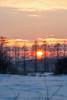Winter sunset (kondex vs mechagodzilla) Tags: sunset sky sun cloud clouds cloudy winter cold snow forest trees tree grass sigma sony minolta polska poland landscape vist view frozen