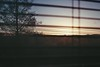Winter sunset through my bedroom window. (CristinaDiaconu23) Tags: analog film minolta x300s 35mm agfavista englishwinter tree sunset sunsetcolours sky shadows endoftheday letthedarknesscome nostalgia