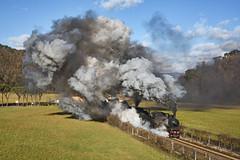 A tutto Vapore (Paolo Brocchetti) Tags: gr625 treno vapore trenitalia paolobrocchetti befana sieve ferrovia toscana