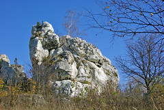 Lonely rock with birch (Hejma (+/- 5200 faves and 1,6 milion views)) Tags: historical watchtower soldering jura tree scrub grassland pastures rock fall fence autumn colors chiaroscuro
