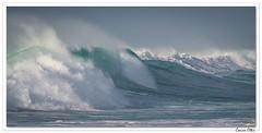 La vague et le Goéland (Corine et Jean-Yves) Tags: mer vague ecume bretagne france océan