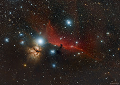 "The Horsehead Nebula (Martin_Heigan) Tags: horsehead nebula ic434 barnard33 widefield apo astronomy astrophysics astrograph telescope heigan wo sgp dso astrophotography celestron avx color colour deepsky space science physics canon 60da mhastrophoto october2016 emissionnebula darknebula gasanddust glowinghydrogen spectralline ngc2024 flamenebula stars flickrexplore explore sterrekunde astronomie astronomical wow astrometrydotnet:id=nova1916528 astrometrydotnet:status=solved ""ζori"" ""alnitak"" ""σori"" ""ngc2024"" ""ngc2023"" ""ic432"" ""ic434"" ""ic435"" ""ic431"" refractor martin williamoptics star71 amateurastronomy amateurastronomer backyardastronomy pixinsight longexposures deepskyobjects orion"