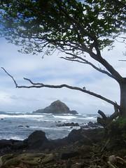 Road to Hana (paige.diamond) Tags: honeymoon hawaii 2017 gotkrafted roadtohana maui hulihulichicken kokibeach