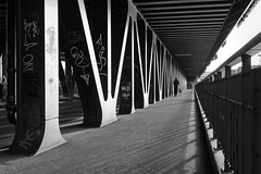 Bridgewalk mono (frank_w_aus_l) Tags: hamburg person dog monochrome bridge bw bnw netb nikon d810 wideangle lines perspective city deutschland de black white geometry oberhafenbrücke