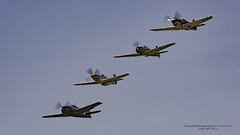 Four ship flight of aircraft at the Flying Heritage Collection Fly Day 06.20.2015. (Hawg Wild Photography) Tags: ross reisen fighter wwii steve north jr american bud mustang fighters warbirds sr zero mitsubishi warbird hinton curtiss grumman tomahawk p51d paulgallen f6f5 flyingheritagecollection p40c granley a6m322 painefieldairportkpae