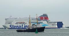 STENA HOLLANDICA & ELBE (kees torn) Tags: ferry tugs elbe stenaline portofrotterdam maasmond stenahollandica sleepvaartmuseummaassluis