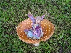 our garden (Kat Zolita Mason) Tags: new kat kate mason zealand wellington poet singersongwriter goldsbrough goldsborough blumsky zolita celticfairy katzolitamason kateblumsky