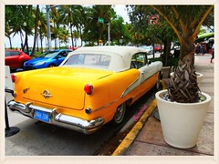 Rocket 88 - Yellow Oldsmobile Swagger (Only time heals wounds) Tags: white simone florida miami rocket 88 oldsmobile floride vieillevoiture yellowandwhite rocket88 carautomobile herberouge antiqueoldsmobile 20150501floride2015