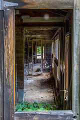 Look (ThruKurtsLens.com (Kurt Wecker)) Tags: old abandoned broken weeds decay barns rusty americana lostworld leftbehind silkmill canon5dmkiii abandonedamerica thrukurtslenscom kurtwecker