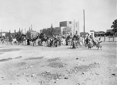 02_Egypt - Bridal Procession (usbpanasonic) Tags: northafrica muslim islam ceremony egypt culture nile cairo nil egypte islamic  caire moslem egyptians misr qahera masr bridalprocession egyptiens kahera