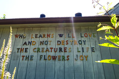 Flowers Joy (The Flying Inn) Tags: life park flowers plants lake love nature rainbow poem pennsylvania letters joy doylestown creatures buckscounty destroy lakegalena naturecenter learns peacevalley whoyougonnacall henrymercer reservoirsign