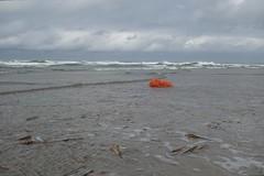 Orange rope drifted ashore (avista) Tags: orange beach terschelling contrast waddeneiland sony nederland thenetherlands zee rope northsea oranje midslandaanzee rx100 scheepstouw