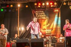 Festival Flamenco de La Mina 18