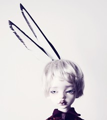 The magpies at the end of the garden leave their gifts (Champignons) Tags: doll bjd dim laia balljoint dollinmind