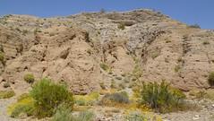 IMGP1833.jpg (DrPKHouse) Tags: arizona unitedstates loco bullheadcity bullhead
