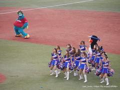 Passion  with  / Jingu Stadium (zaki.hmkc) Tags: baseball passion cheer    swallows carp