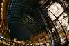 Garden Arch (H.H. Mahal Alysheba) Tags: night tokyo snapshot christmas illumination wide fisheye sigma 15mmf28 nikon city