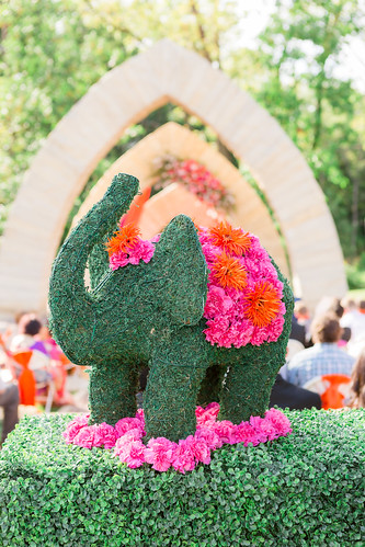"Floral Elephant • <a style=""font-size:0.8em;"" href=""http://www.flickr.com/photos/81396050@N06/31270116813/"" target=""_blank"">View on Flickr</a>"