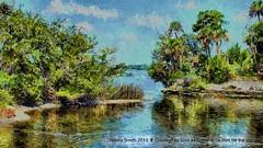 The beautiful Tomoka River (NancySmith133) Tags: awardtree tomokariver volusiacounty centralfloridausa painterly photopaintingsoutdoorscenes textura