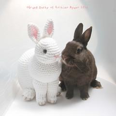 My bunny and realistic amigurumi bunny (ayano-pany) Tags: amigurumi amigurumianimal amigurumibunny crochet bunny rabbit lapin conejo yarn handmade realistic