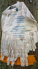 RAGGEDY (akahawkeyefan) Tags: paper telephone pole davemeyer kingsburg staples