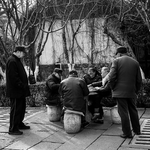 jinanshi shandongsheng chine cn street urban city outside outdoor people bw bnw black white blackwhite blackandwhite monochrome asia asian china chinese canon eos 100d 24mm prime jinan old stand seat standing seating standed seated play playing game mahjong table trees winter cold bet money fun cap coat glasses rock concentration concentrated consentrate reflexion witnesses disturbed disturbing disturb disturbance players men women