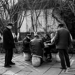 A game of life (Go-tea 郭天) Tags: jinanshi shandongsheng chine cn street urban city outside outdoor people bw bnw black white blackwhite blackandwhite monochrome asia asian china chinese canon eos 100d 24mm prime jinan old stand seat standing seating standed seated play playing game mahjong table trees winter cold bet money fun cap coat glasses rock concentration concentrated consentrate reflexion witnesses disturbed disturbing disturb disturbance players men women
