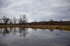 Explore (yoshiffles) Tags: cy365 hike hiking medina medinacountyparks pond wolfcreek wolfcreekenvironmentalcenter