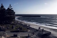 Beachside View (Daniel E Lee) Tags: cottesloe beach cottesloebeach perth summer australia sunset canoncanonm5 canoneosm5 m5 mirrorless apsc canonefm22mmf2 canon22mmf2 22mm pancake pancakelens naturallight ambientlight photosbydlee photography photoshop lightroom