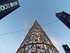 Le cône - The cone (p.franche Occupé - Busy) Tags: lx3 bruxelles brussel brussels belgium belgique belgïe europe pfranche pascalfranchehdr dxo flickreliteschaerbeek schaarbeek dockxbruxsel cone cône sapin pine sky ciel light lumière panasomic lumix