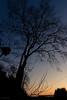 Tonight (Sohmi ︎) Tags: france french landscape nuit night illeetvilaine marcillérobert bretagne britain couleursdenuit nightcolor arbre trees extérieur couchédesoleil nikond810 lumière light ©sohmi sunset sky nikonflickraward