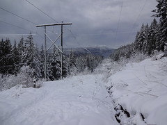 Powerline (mag3737) Tags: snow woods forest fromme mtfromme powerline