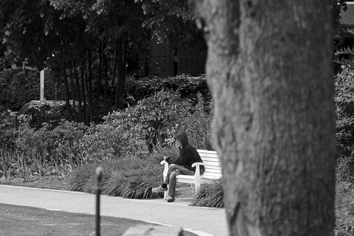 """Parkbank (2) BW • <a style=""""font-size:0.8em;"""" href=""""http://www.flickr.com/photos/69570948@N04/18086406618/"""" target=""""_blank"""">View on Flickr</a>"""