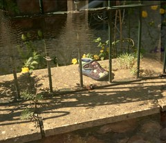 Duck/shoe (dichohecho) Tags: film analog 35mm bristol bath analogue sprinty kodakcolorplus200 dichohecho kingregulasprintybc