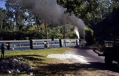Toy Train (Daniel Biays) Tags: india train l ll inde toytrain westbengal chemindefer trainàvapeur bengaleoccidental