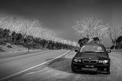 Journey in Black and White. (God_speed) Tags: road park new trip travel trees white black mountains car sport wales gum drive highway automobile outdoor snowy south australia eerie m national bmw 330ci kosciuszko e46